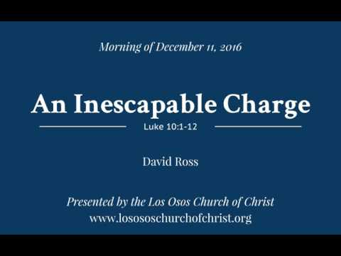 An Inescapable Charge - David Ross