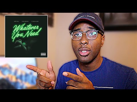 Meek Mill - Whatever You Need Feat. Chris Brown & Ty Dolla $ign (REVIEW /REACTION)