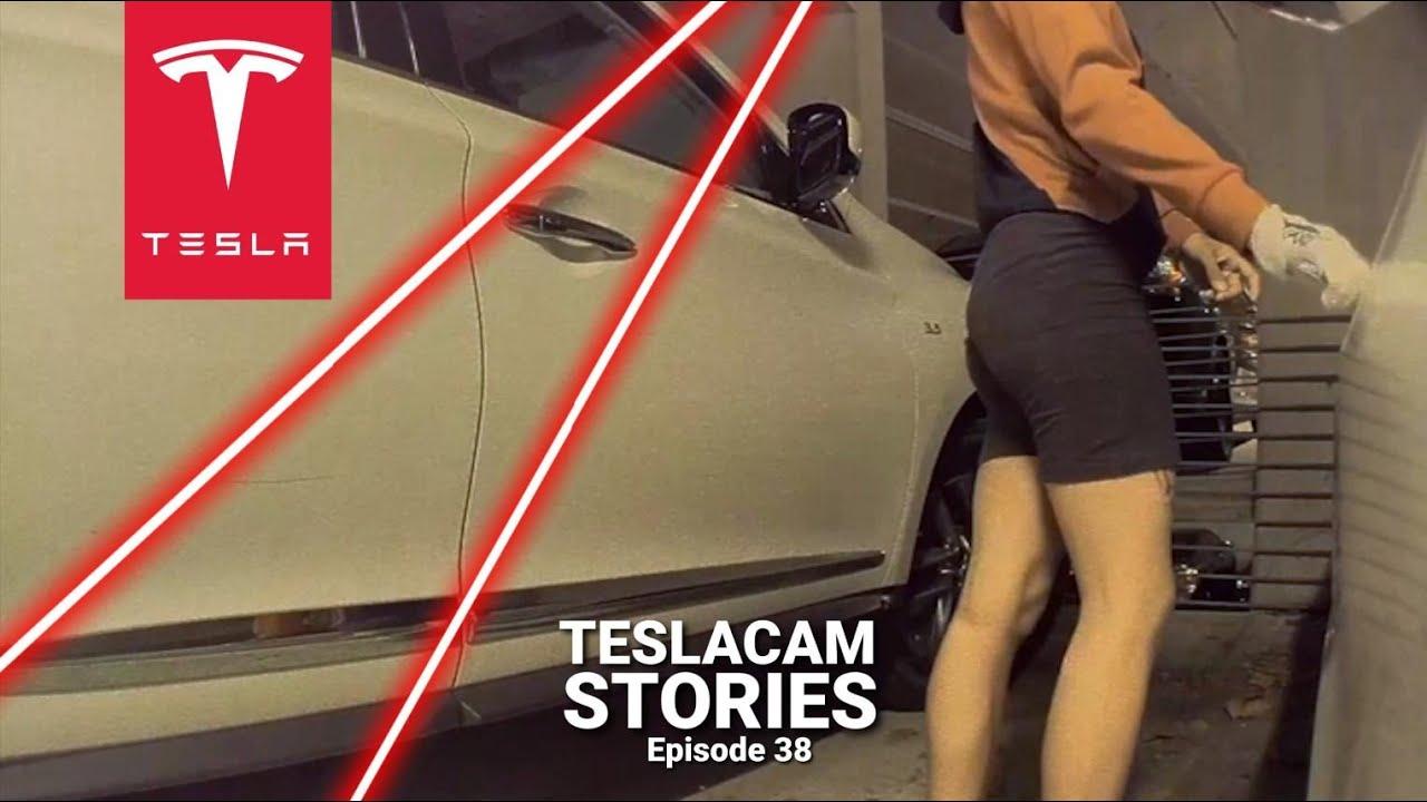 TESLA SENTRY MODE LASER   TESLACAM STORIES #38