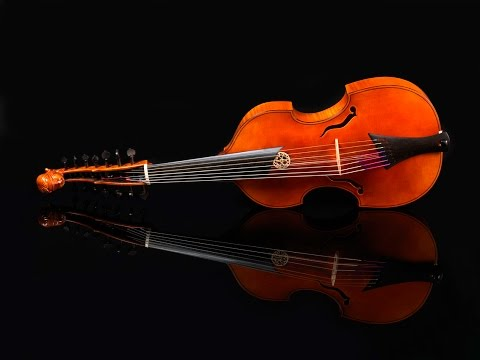 Valerio Losito plays Partita in F for Viola d'amore by Christian Petzold