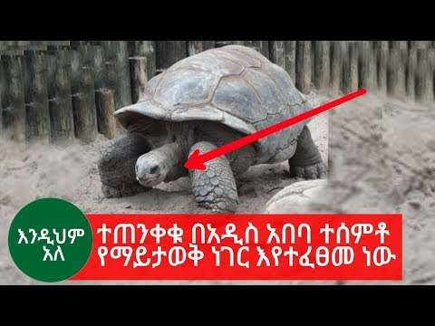 Be Careful There Is Something Unknown Happening In Addis Ababa