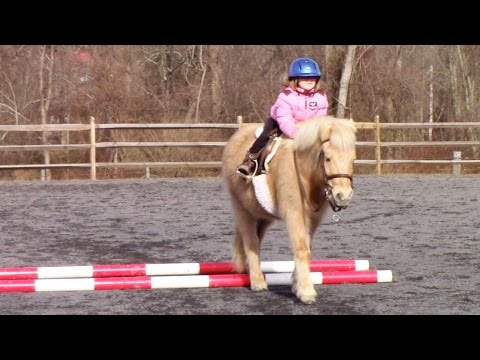 First Time Horse Riding Over Ground Poles | Crazy8Family