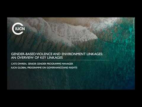 agent-webinar:-gender-based-violence-and-environment-linkages---key-issues-and-strategies-for-change