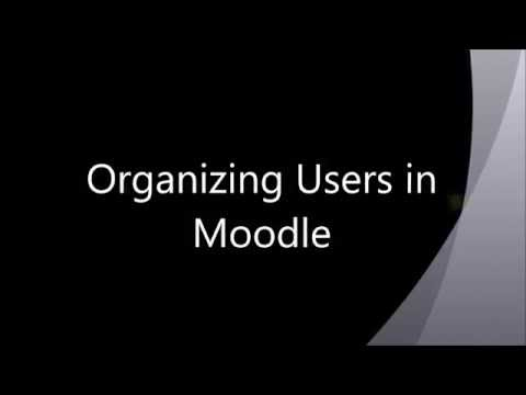 Organizing Users In Moodle