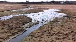 Vaal Dam sewage pollution. Human Health Risk. Oranjeville