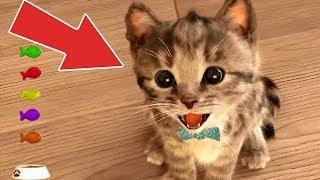 Minik Kedinin Eğlenceli Dünyası #Çizgifilm Tadında Yeni Oyun
