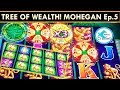 WE LOVE (& HATE!) THIS GAME! TREE OF WEALTH SLOT MACHINE! BOTH VERSIONS!