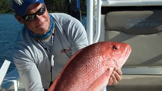 Texas Red Snapper Fishing