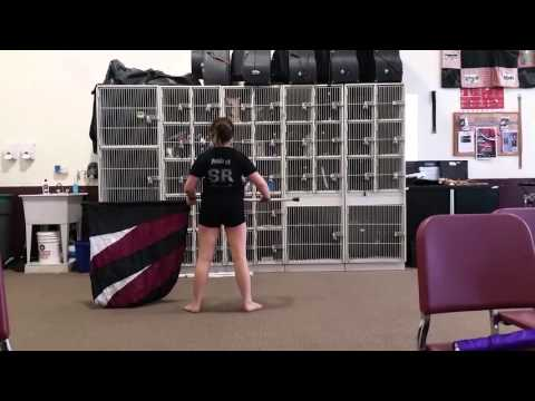 NIU marching band scholarship audition-color guard