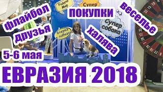 ВЫСТАВКА СОБАК ЕВРАЗИЯ 2018! ДЖИНА НА ВЫСТАВКЕ/ПАНЯ/БОЛЬШОЙ ВЛОГ!