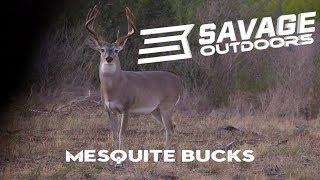Mesquite Bucks - Savage Outdoors