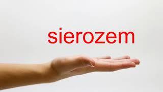 How to Pronounce sierozem - American English