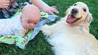 BABY MEETS NEW DOG!
