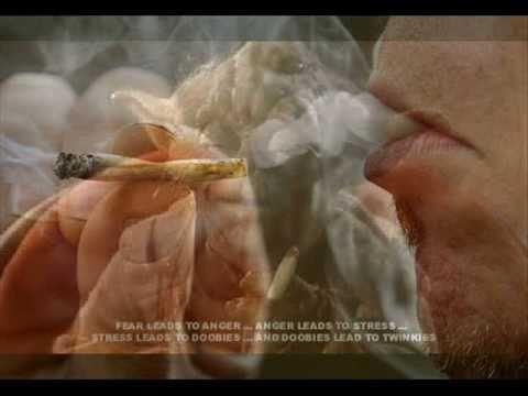 Great Dane CompilationKaynak: YouTube · Süre: 4 dakika54 saniye