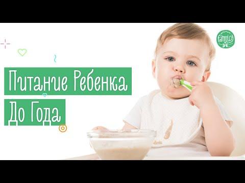 Питание Ребенка До Года   Советы Педиатра   Family is...