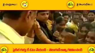 TDP 2014 Election SONG