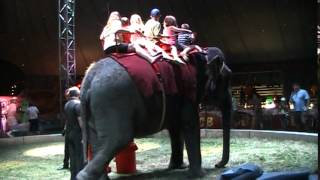 Riding an Elephant at the Circus