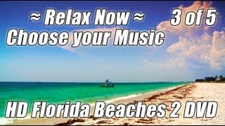 STUDY MUSIC PLAYLIST Choose Studying Music Relaxing Piano Wave Sounds Smooth Jazz Ocean Relax