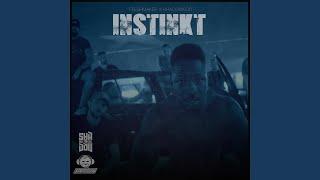 Instinkt (feat. Shadow030)
