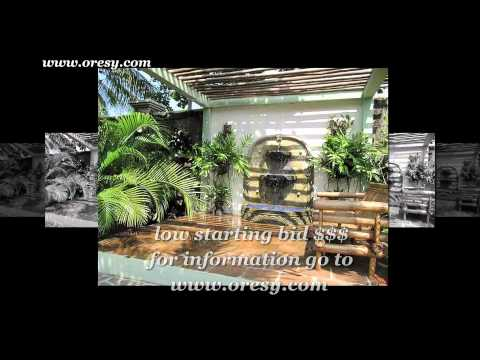 Nicaragua Real Estate Auctions Beach Properties For Sale
