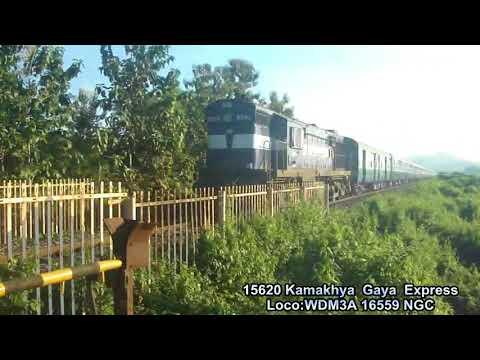 15620 KYQ Gaya Express  On A November Afternoon