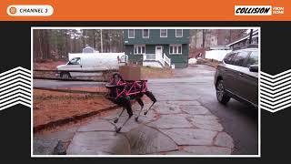 Boston Dynamics' Spot robot in the home