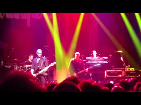 Stranglers : N'emmènes pas Harry, Golden Brown, Bear Cage