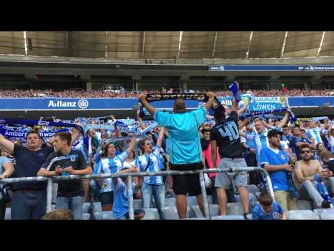 Löwen aus Leidenschaft - Der TSV 1860 München und seine Fans