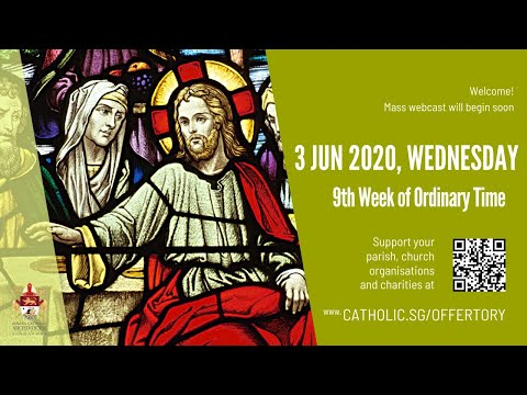 Catholic Sunday Mass Today Live Online - Sunday, 15th Week of Ordinary Time 2020 - Livestream from YouTube · Duration:  1 hour 7 minutes 32 seconds