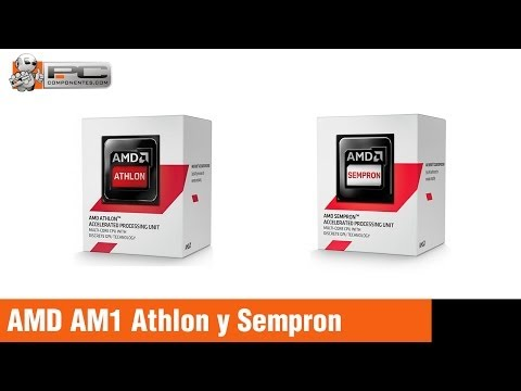 Review - Comparativa AMD AM1 Kabini Athlon 5150 - Athlon 5350 - Sempron 2650 - Sempron 3850
