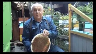 Круглая рамка Белоусова - часть 1