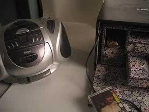 musicbox cairo
