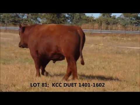 LOT 81--KCC Duet 1401-1602