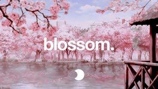 Blossom | Lofi HipHop