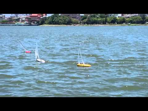 RC Sailing Lotus Pond Kaohsiung Taiwan 2