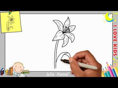 Blume zeichnen lernen