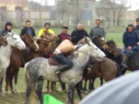 Horseback Wrestling, Shymkent, Kazakhstan
