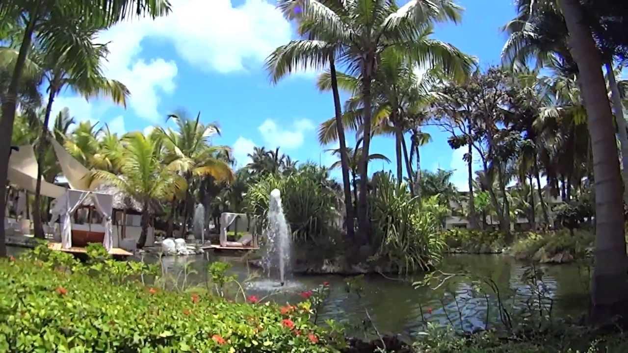 Punta Cana Catalonia Bavaro Beach Golf Amp Casino Youtube