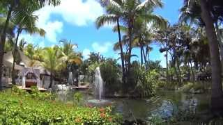 Punta Cana. Catalonia Bavaro Beach Golf & Casino.