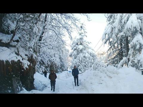 Snowfall in sikkim changu