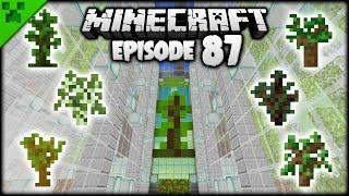FINISHING The Minecraft Tree Farm! | Python