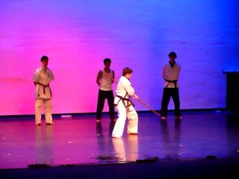 Swarthmore Martial Arts Club, Fall 2010