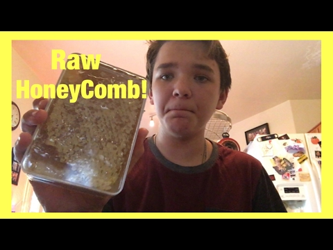Raw HoneyComb Review!