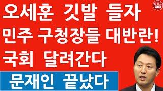 긴급! 민주당 서울구청장들 내일 국회 몰려간다! 오세훈…