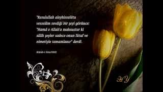 Üstün Müslüman Kadın Hz. Ayşe-2