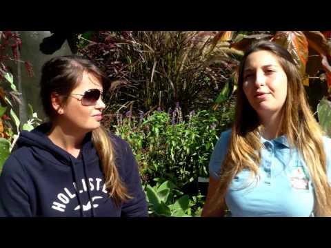 Bruna, TOP intern, talks about her internship in a botanical garden - Portuguese