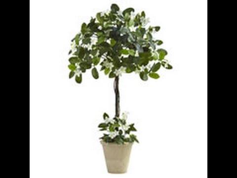 silk topiary trees cedar spiral tree sweet triple bay ball silk topiary silk trees - Silk Trees