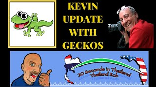 GECKOS ARE IN THE HOUSE! VLOG446