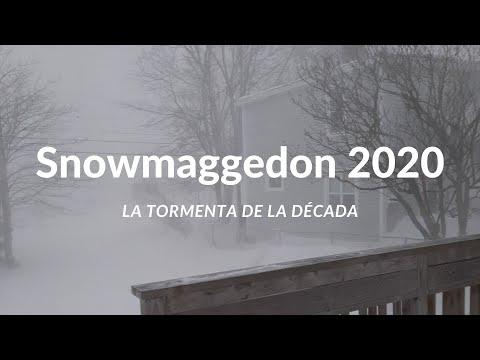 """Snowmaggedon"" - Tormenta del Récord en Terranova"