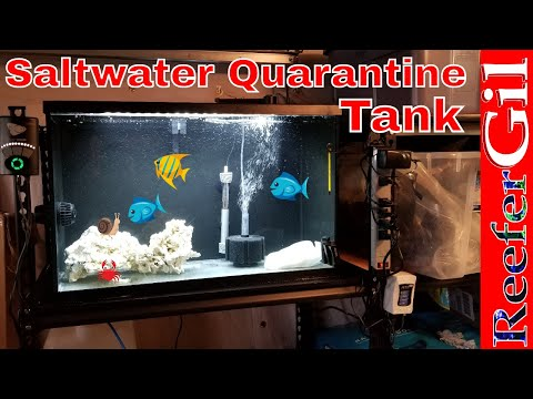 Build Series|Eps. 23| How To Set Up A Quarantine Tank